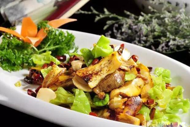 素食牛肝菌4