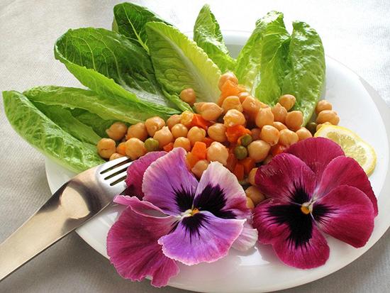 鹰嘴豆菜品