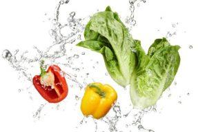 【素食文化】日本素食文化的渊源与发展
