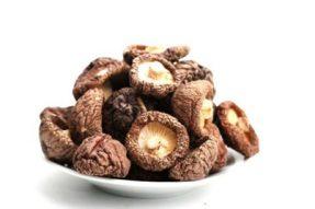 【素食食材】香菇