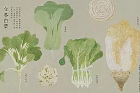 素食可以让人活得更健康(素食学校的素食厨师们都身体棒棒哒、素食培训、素食连锁、素食菜谱可要看看啦)