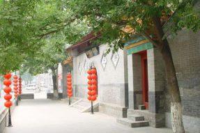 探幽京城三圣庵:菩提树下品素食——广州素食学校