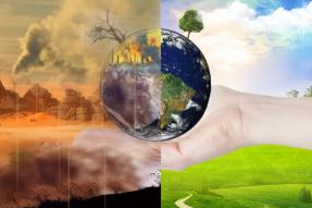 联合国再次敦促人们转向以植物为基础的饮食,素食对拯救世界至关重要!