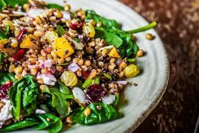 【素食问答】素食者得不到足够的蛋白质?|素食营养