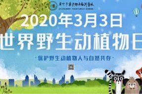 2020.3.3世界野生动植物日︱吃素保护动物,就是保护人类自己!|素食行动