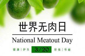 3.20世界无肉日:当你停止吃肉,开始吃素,你会看到这些变化,素食的力量不可思议!