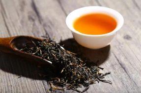 素食禅茶|普洱茶的品鉴